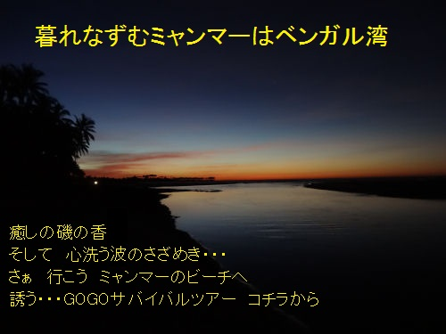 img_20130128-004617.jpg