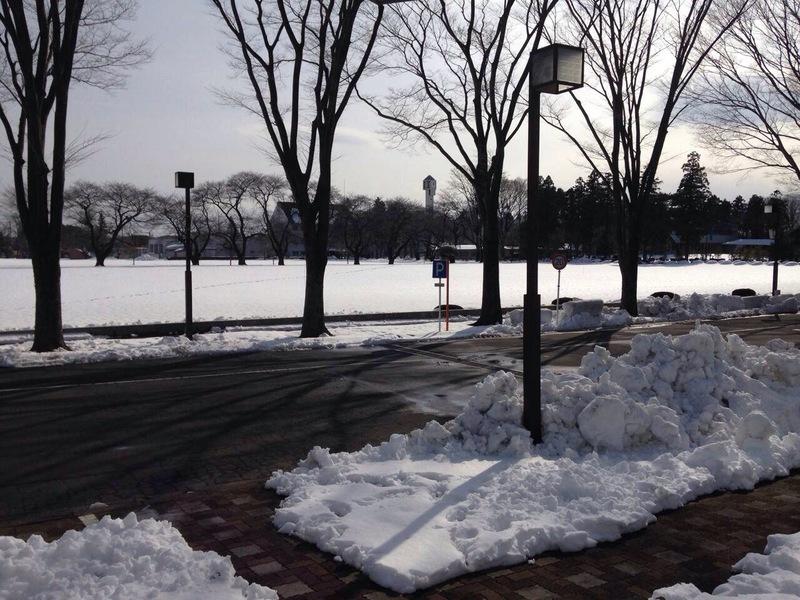 冬はら開催!雪!画像