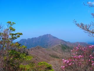 笠松山から見る傾山とアケボノツツジ画像