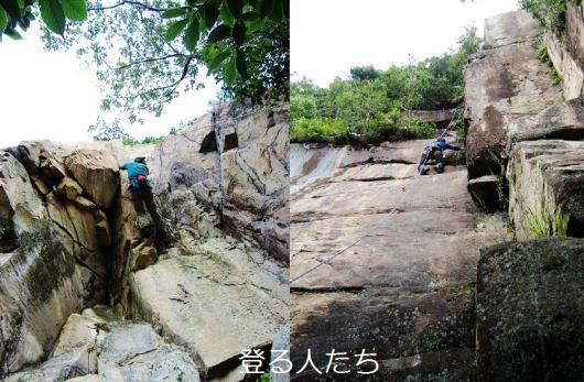 からの…亀山画像