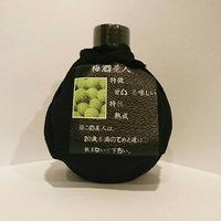 予約販売品【GANTZ:0】梅酒星人特製キープ札つき